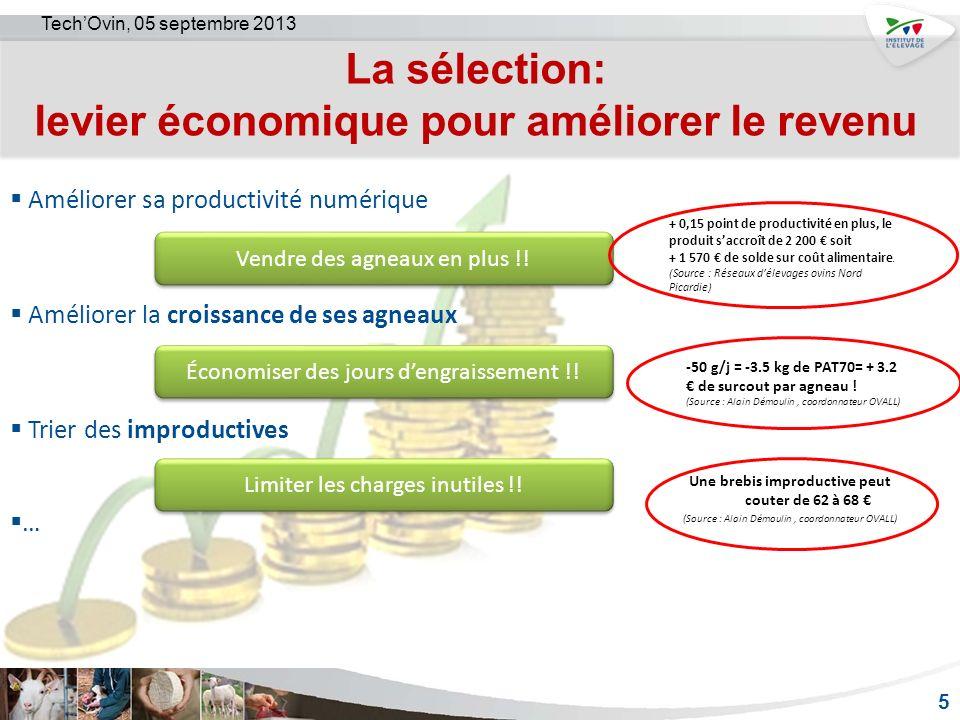La sélection: levier économique pour améliorer le revenu