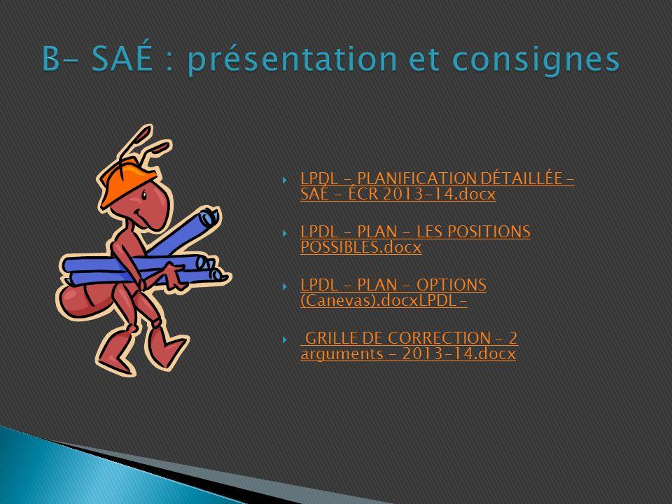 B- SAÉ : présentation et consignes