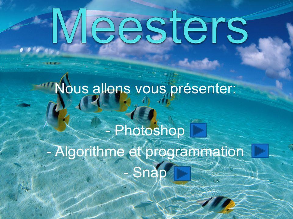 Nous allons vous présenter: - Photoshop - Algorithme et programmation