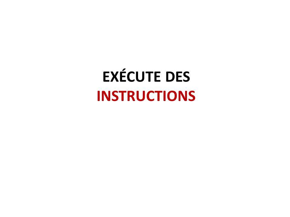 Exécute des instructions
