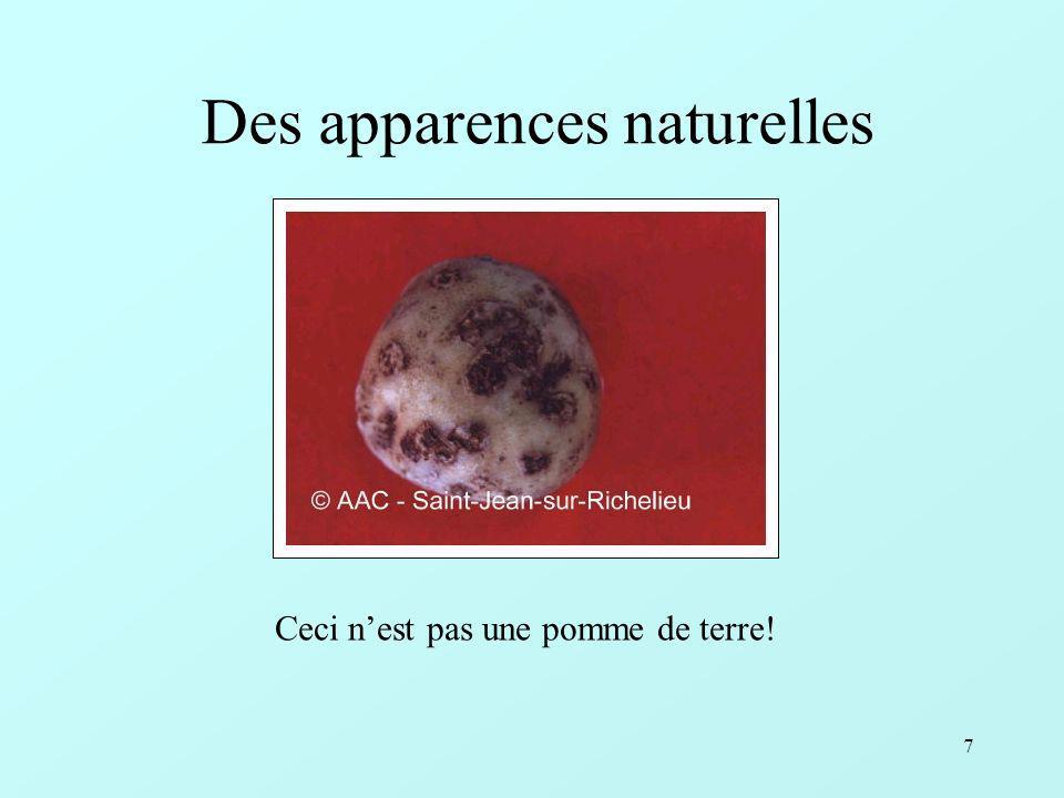 Des apparences naturelles