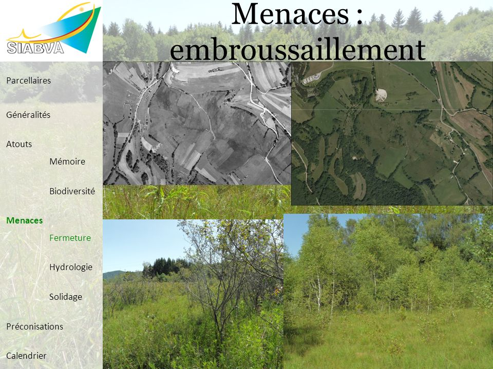 Menaces : embroussaillement