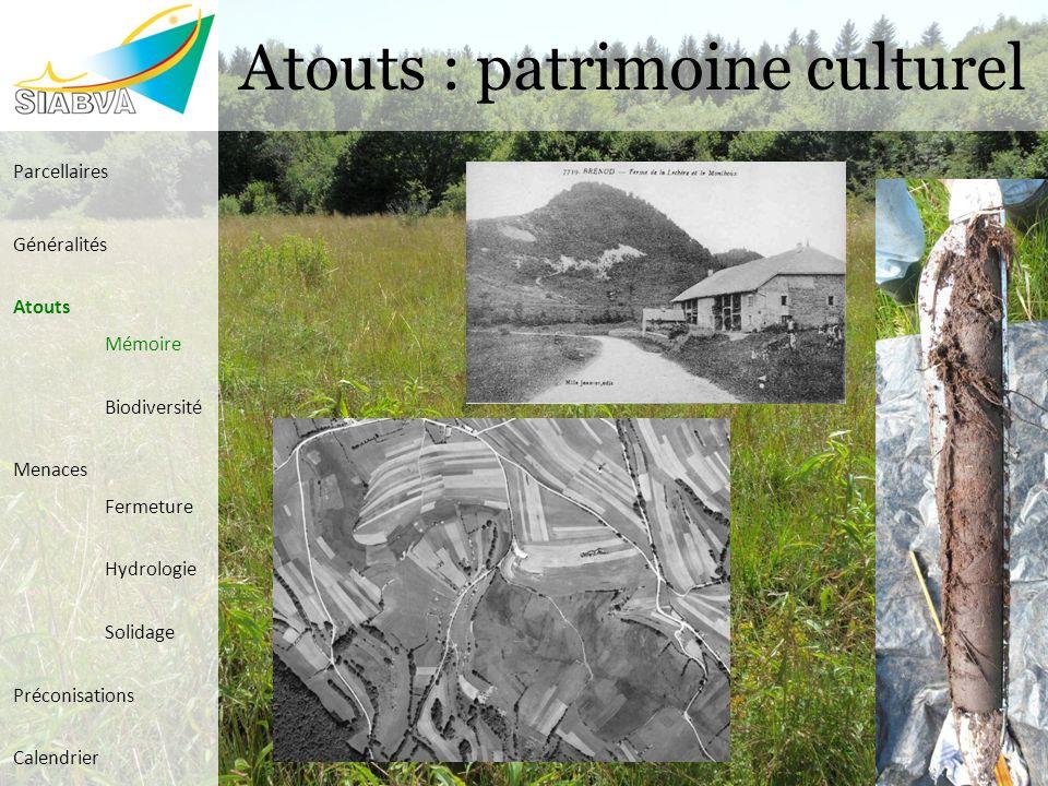 Atouts : patrimoine culturel