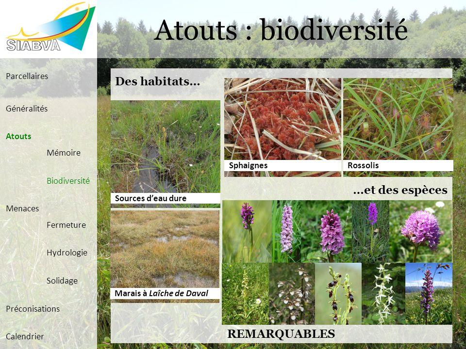 Atouts : biodiversité Des habitats… …et des espèces REMARQUABLES