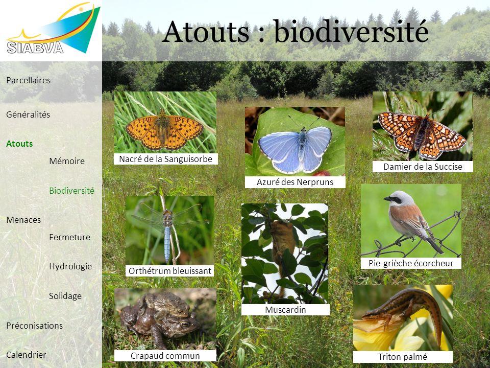 Atouts : biodiversité Parcellaires Généralités Atouts Mémoire