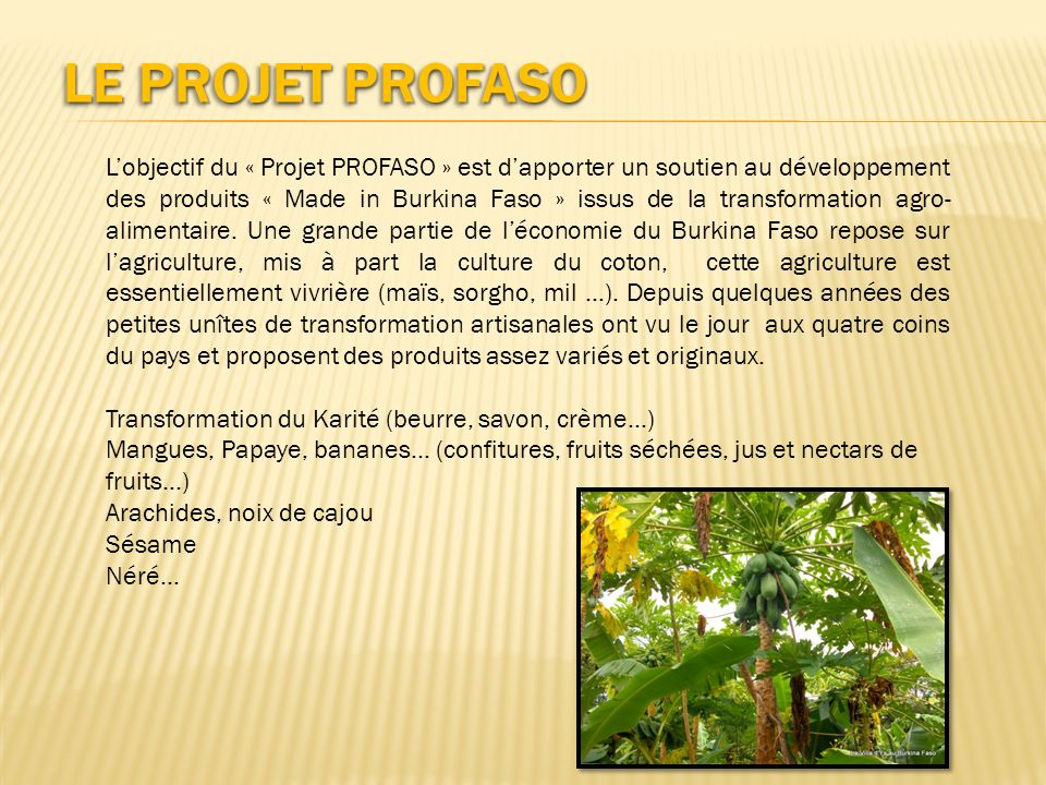 Le Projet PROFASO