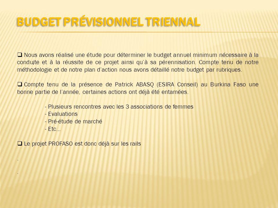 Budget prévisionnel triennal