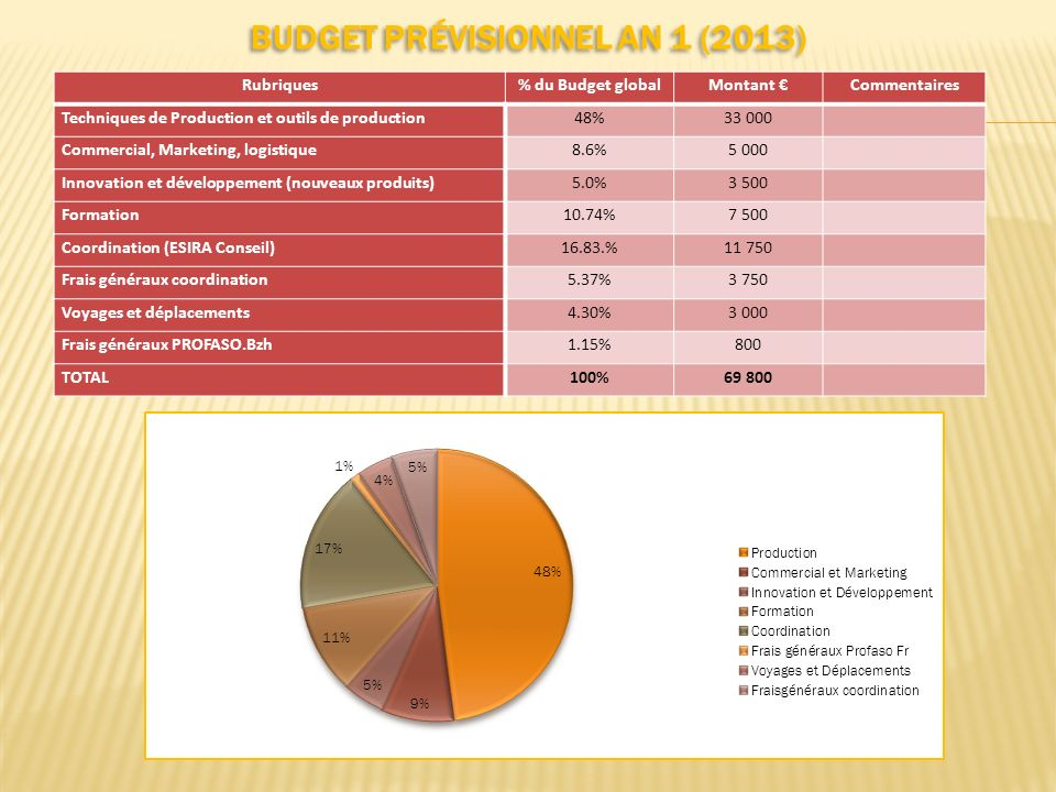 Budget prévisionnel AN 1 (2013)