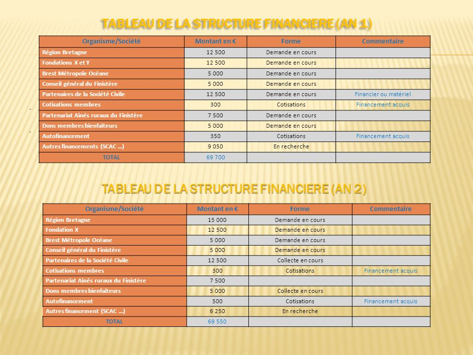 TABLEAU DE LA STRUCTURE FINANCIERE (AN 1)