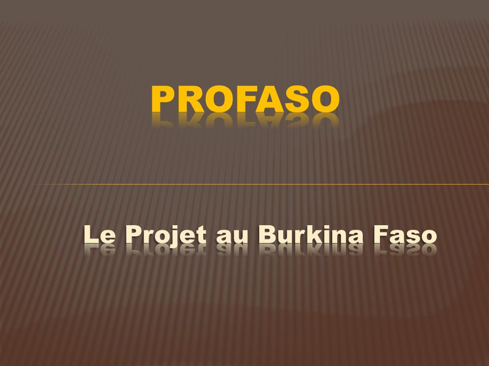 PROFASO Le Projet au Burkina Faso