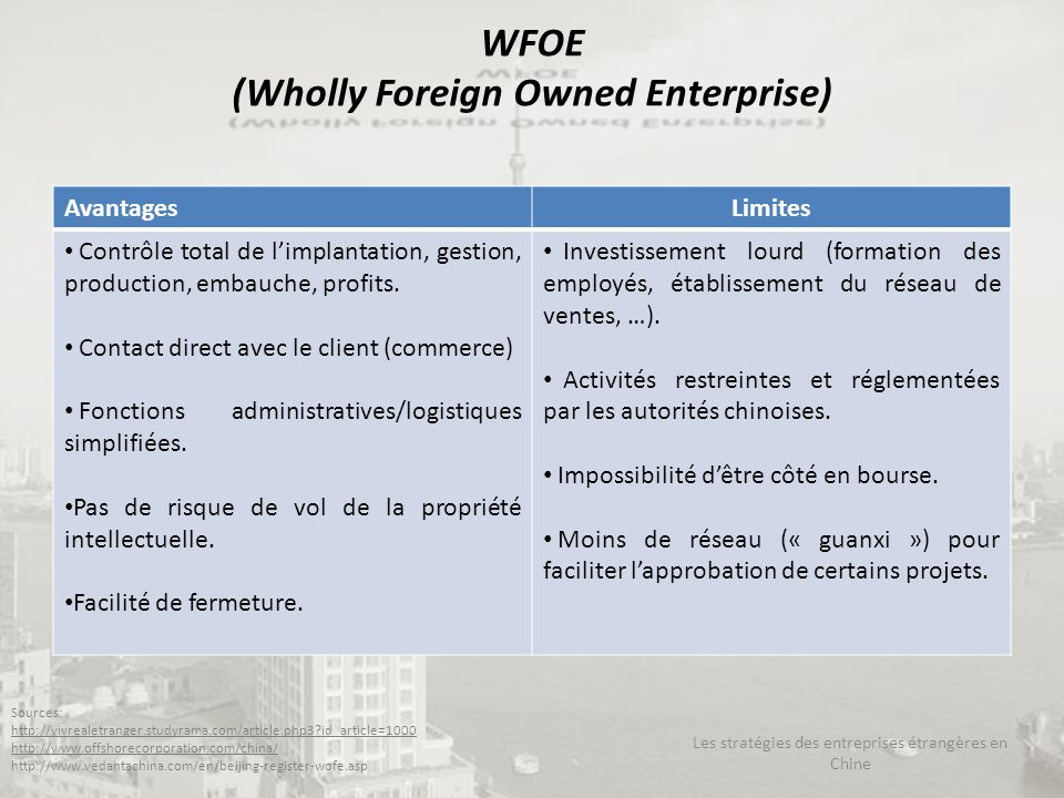 WFOE (Wholly Foreign Owned Enterprise)