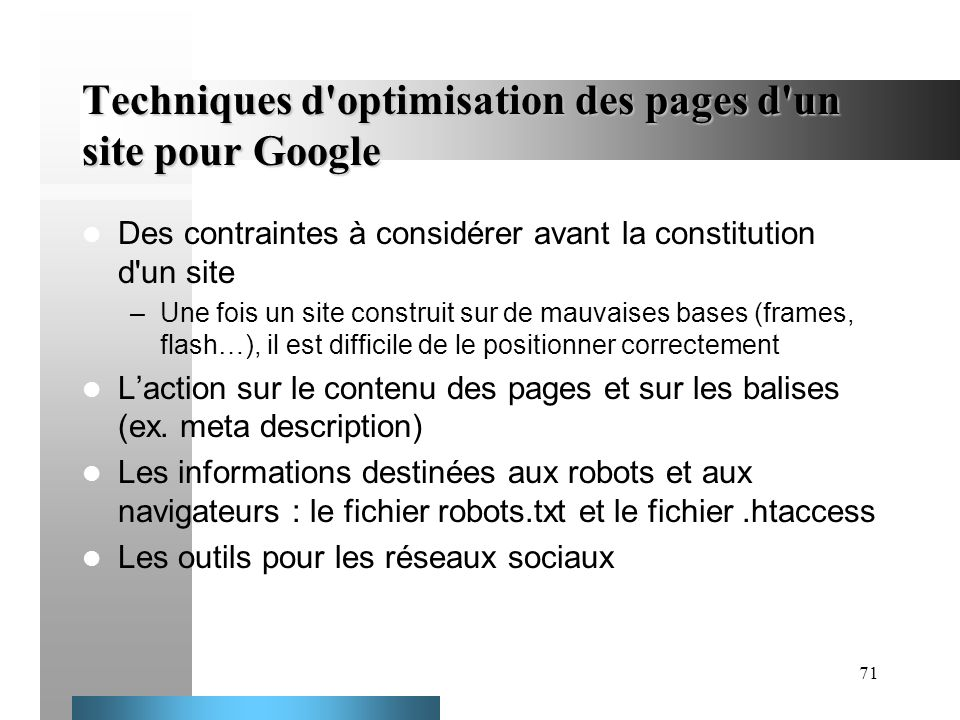Techniques d optimisation des pages d un site pour Google