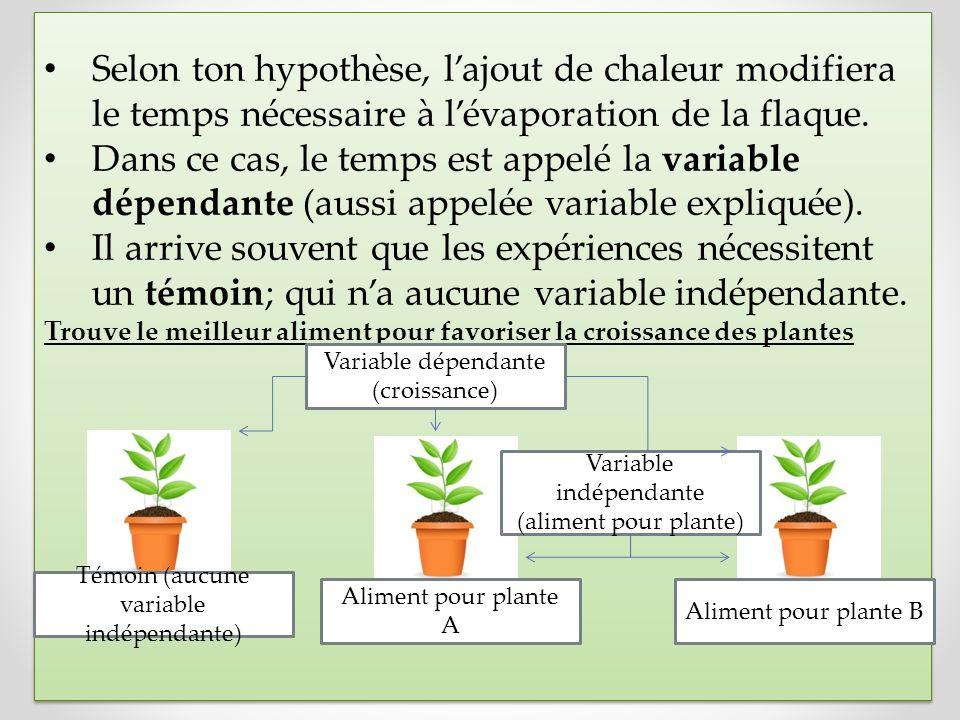 Selon ton hypothèse, l'ajout de chaleur modifiera le temps nécessaire à l'évaporation de la flaque.