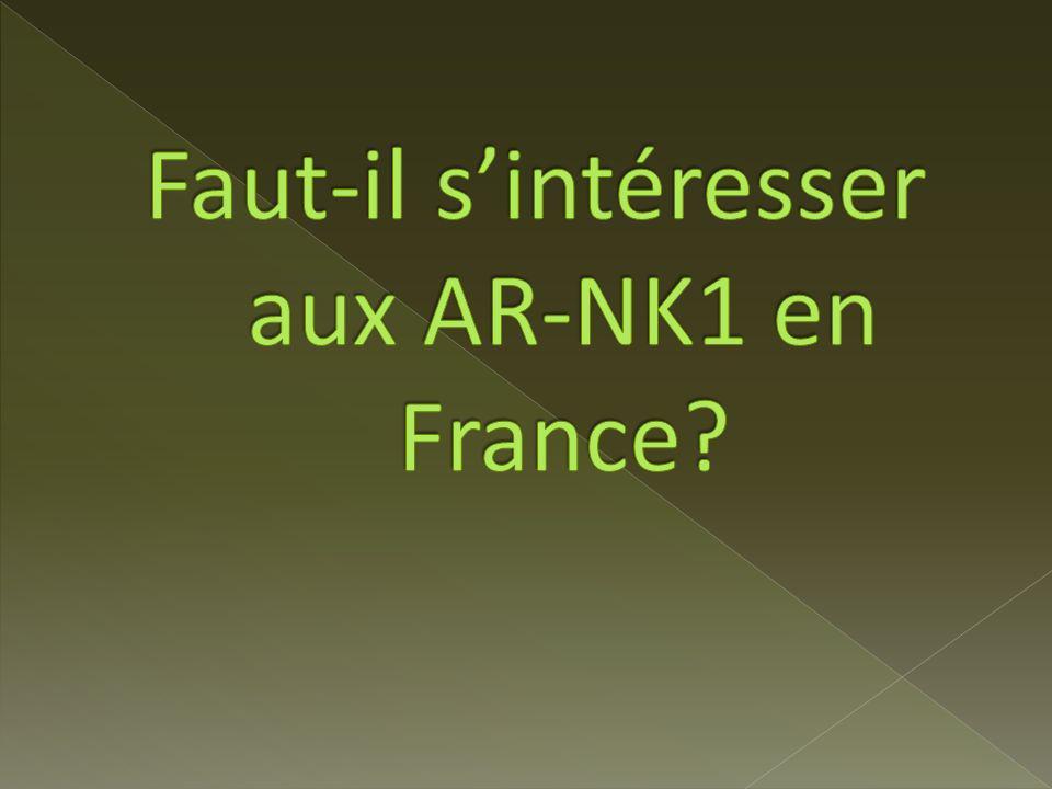 Faut-il s'intéresser aux AR-NK1 en France