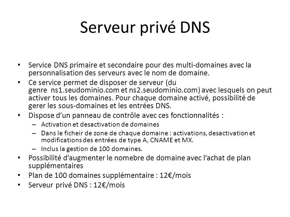 Serveur privé DNS Service DNS primaire et secondaire pour des multi-domaines avec la personnalisation des serveurs avec le nom de domaine.