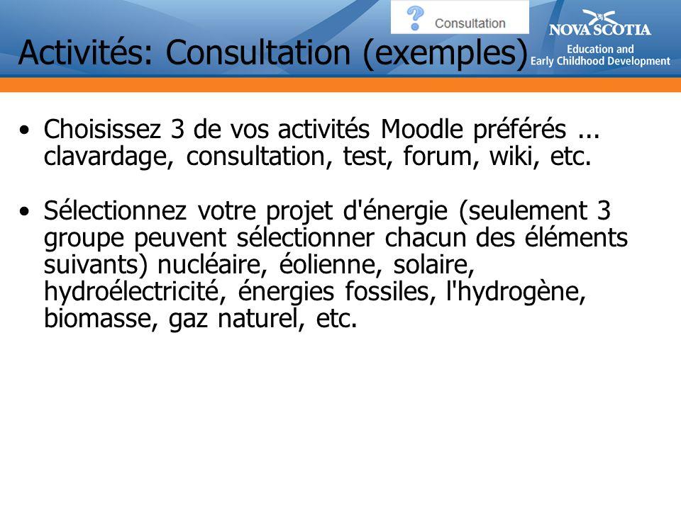 Activités: Consultation (exemples)
