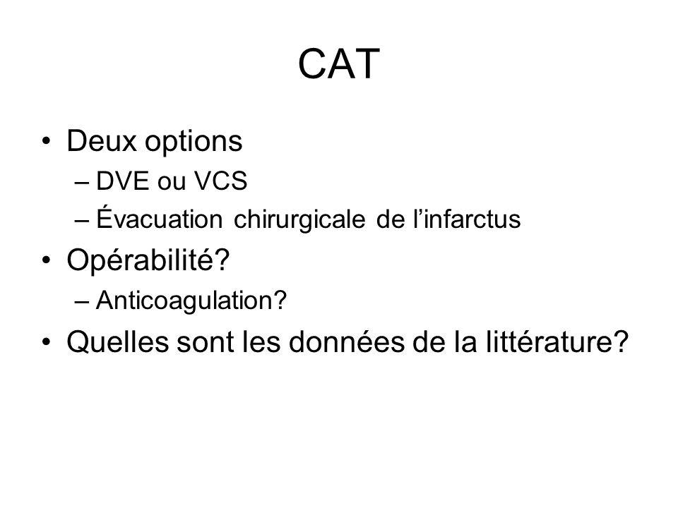CAT Deux options Opérabilité