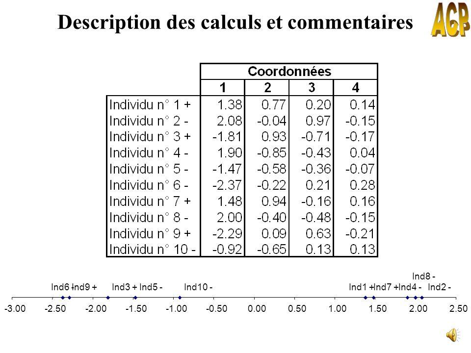 Description des calculs et commentaires
