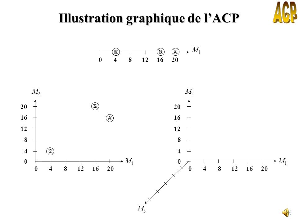 Illustration graphique de l'ACP