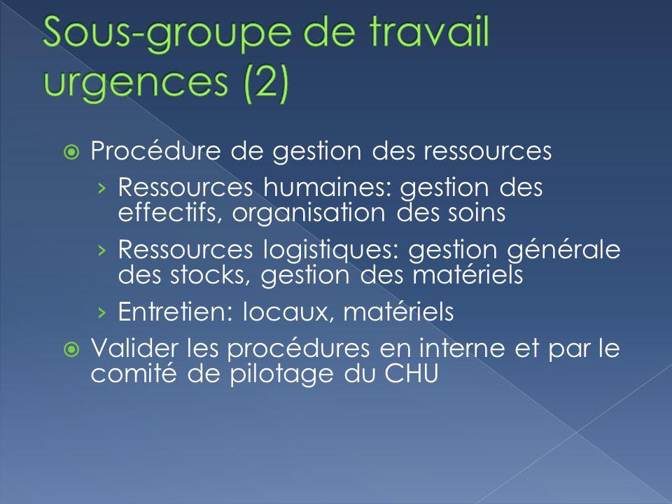 Sous-groupe de travail urgences (2)