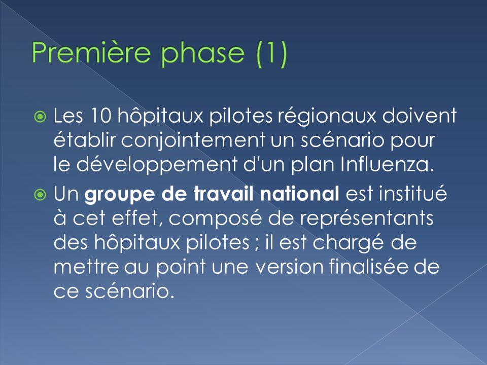 Première phase (1) Les 10 hôpitaux pilotes régionaux doivent établir conjointement un scénario pour le développement d un plan Influenza.