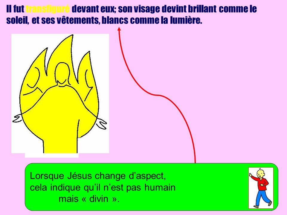 Il fut transfiguré devant eux; son visage devint brillant comme le soleil, et ses vêtements, blancs comme la lumière.