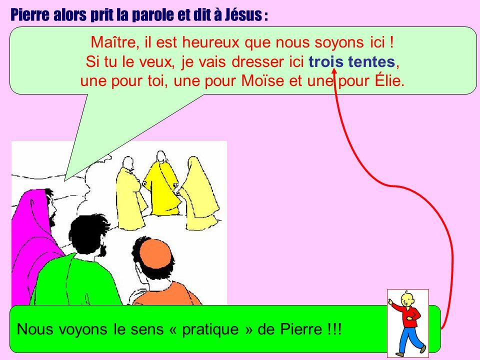 Pierre alors prit la parole et dit à Jésus :