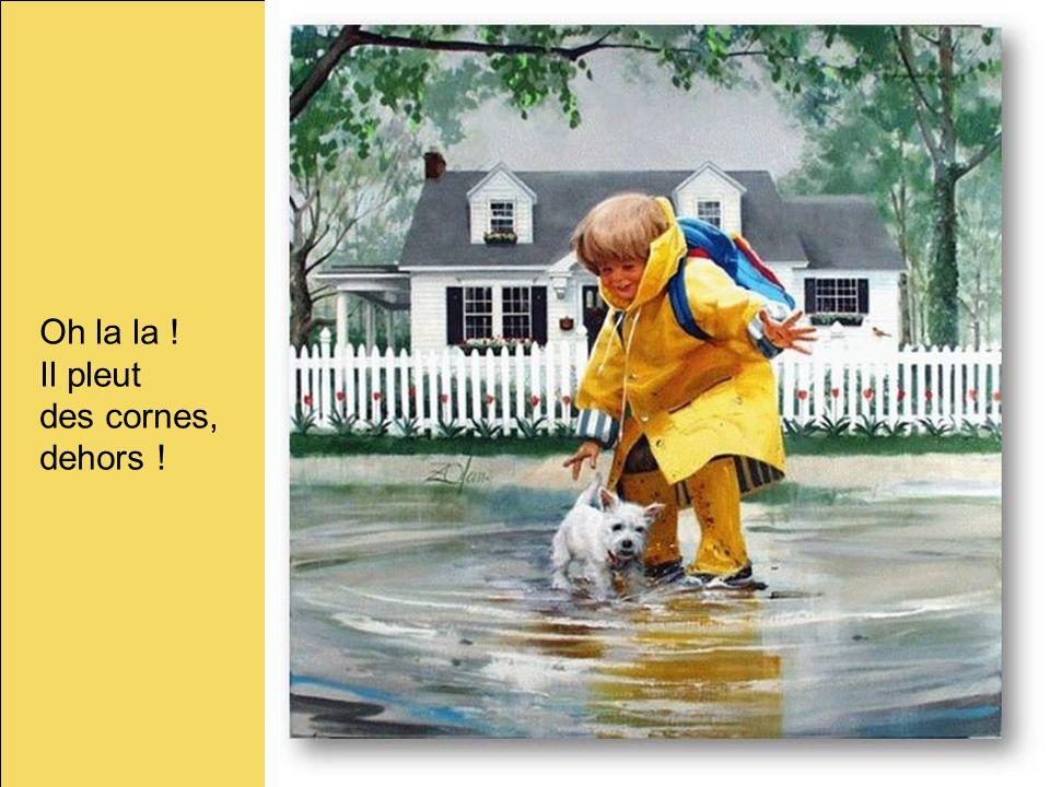 Oh la la ! Il pleut des cornes, dehors ! 4