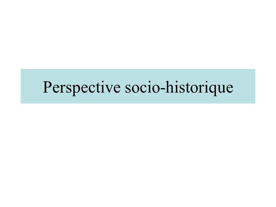 Perspective socio-historique