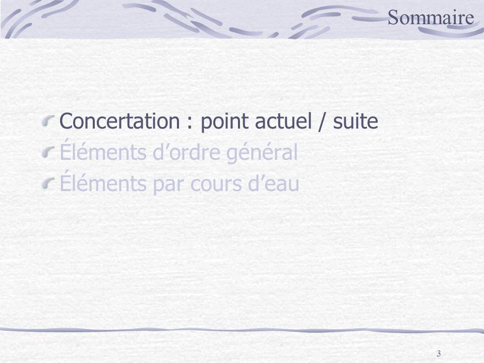 Sommaire Concertation : point actuel / suite Éléments d'ordre général Éléments par cours d'eau