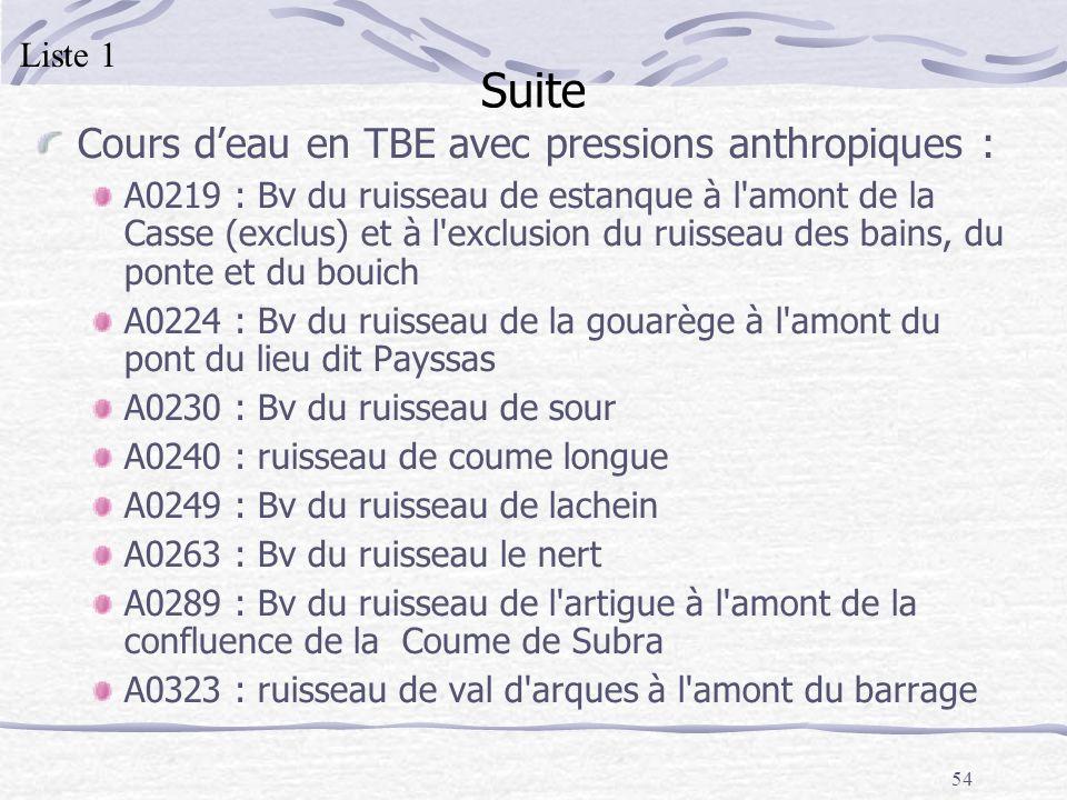 Suite Cours d'eau en TBE avec pressions anthropiques : Liste 1