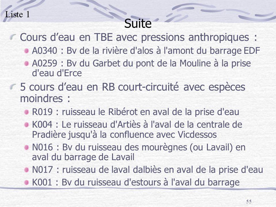 Suite Cours d'eau en TBE avec pressions anthropiques :