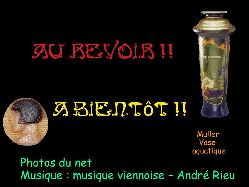Musique : musique viennoise – André Rieu