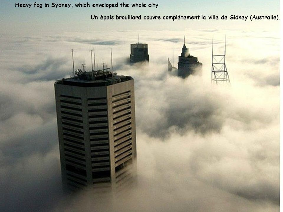 Heavy fog in Sydney, which enveloped the whole city
