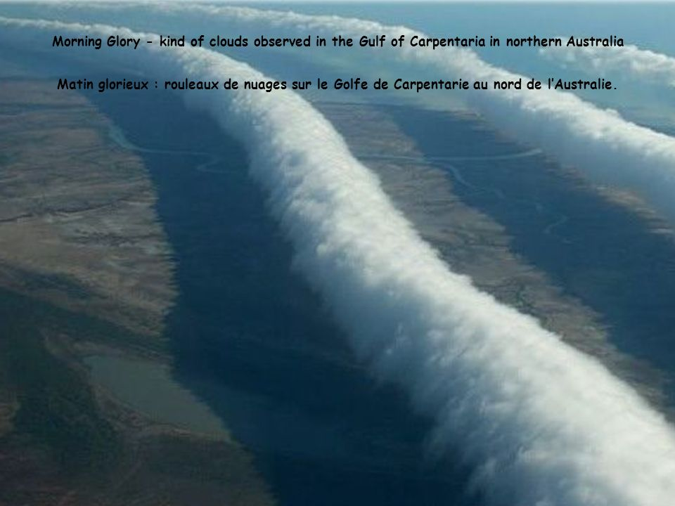 Morning Glory - kind of clouds observed in the Gulf of Carpentaria in northern Australia