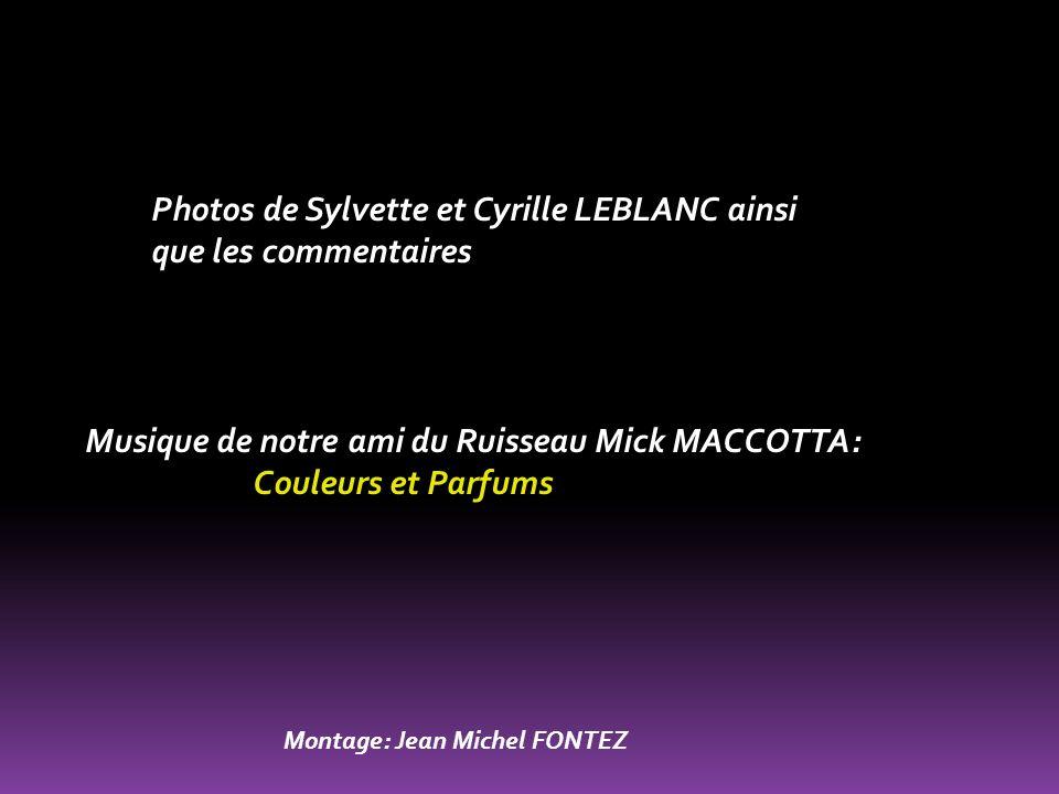 Photos de Sylvette et Cyrille LEBLANC ainsi que les commentaires