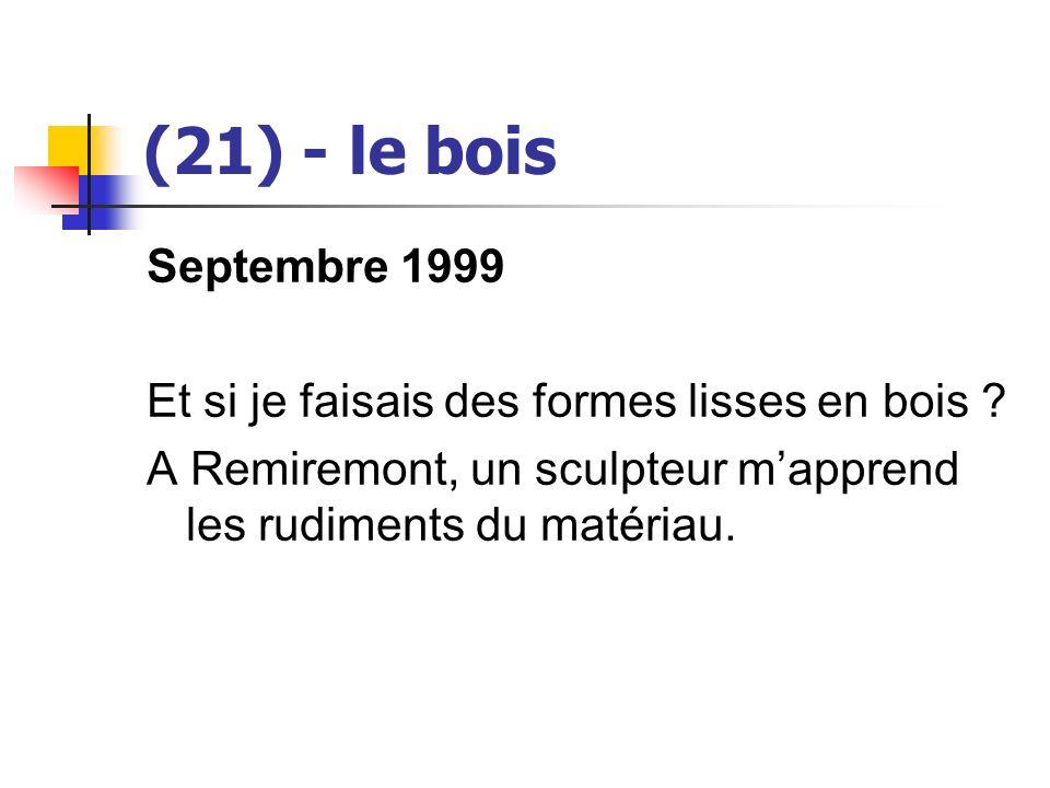 (21) - le bois Septembre 1999. Et si je faisais des formes lisses en bois .