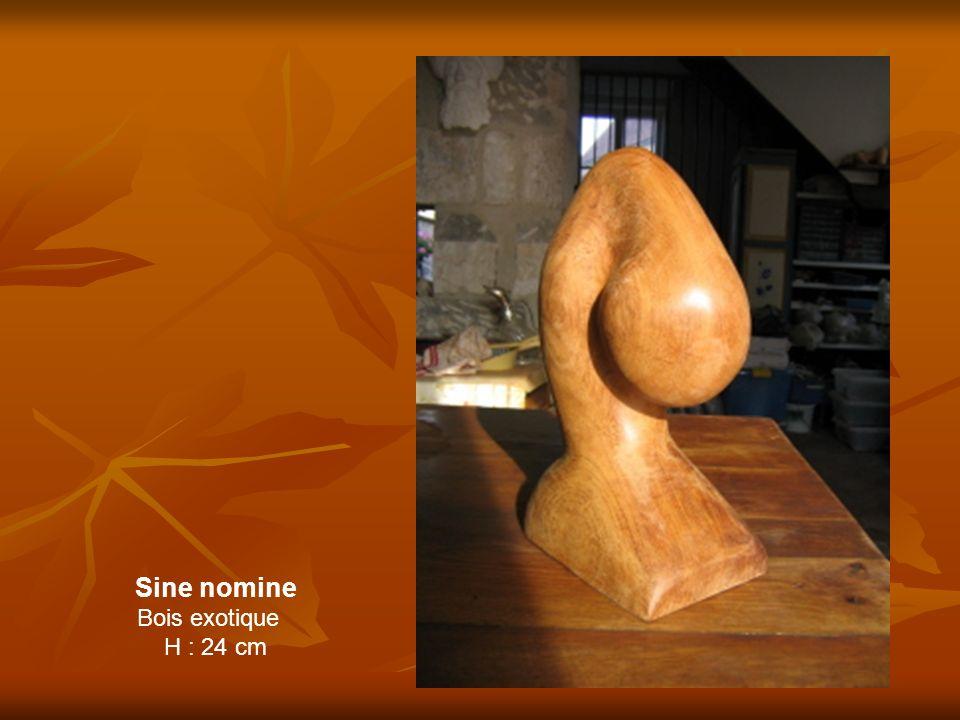 Sine nomine Bois exotique H : 24 cm