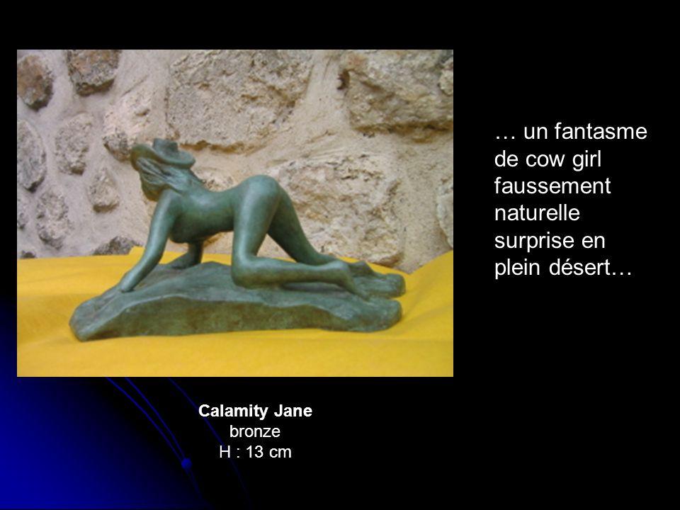 … un fantasme de cow girl faussement naturelle surprise en plein désert…
