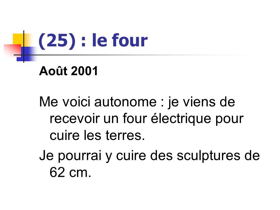 (25) : le four Août 2001. Me voici autonome : je viens de recevoir un four électrique pour cuire les terres.
