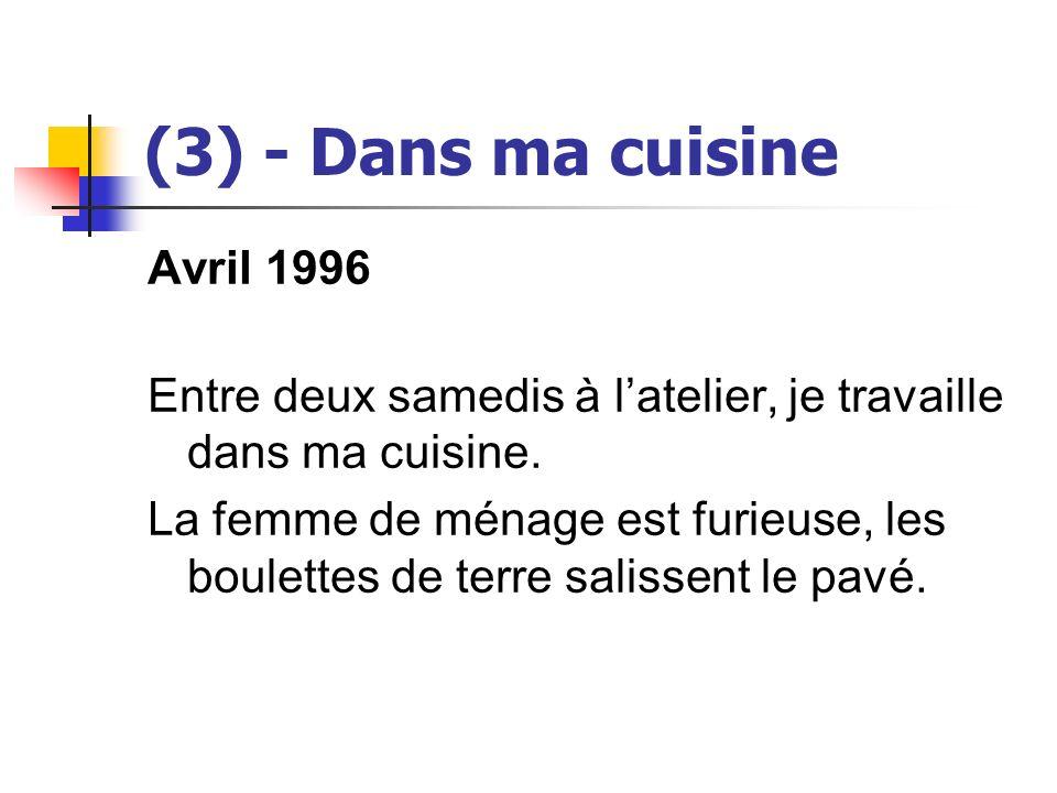 (3) - Dans ma cuisine Avril 1996