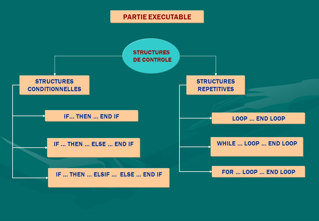 PARTIE EXECUTABLE STRUCTURES CONDITIONNELLES STRUCTURES REPETITIVES