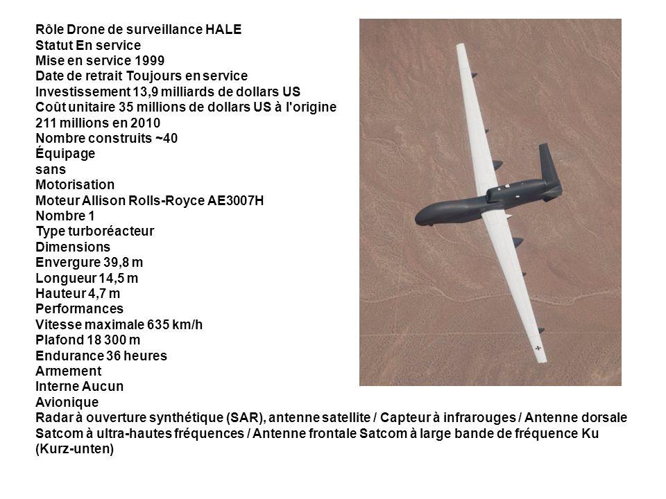 Rôle Drone de surveillance HALE