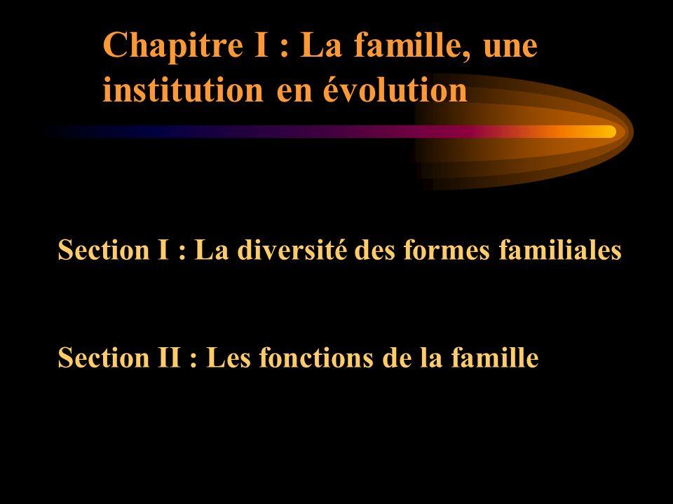 Chapitre I : La famille, une institution en évolution