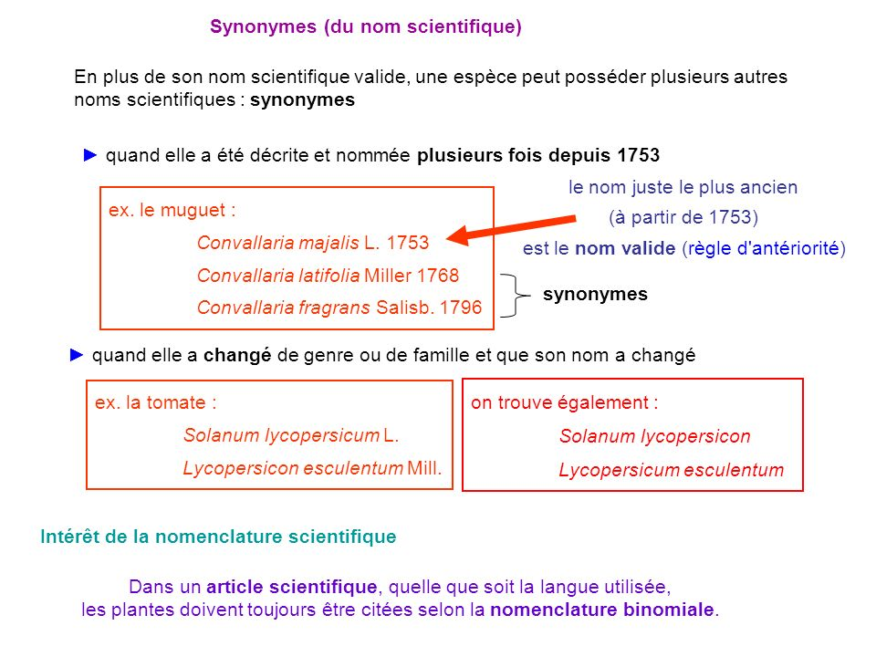 Synonymes (du nom scientifique)