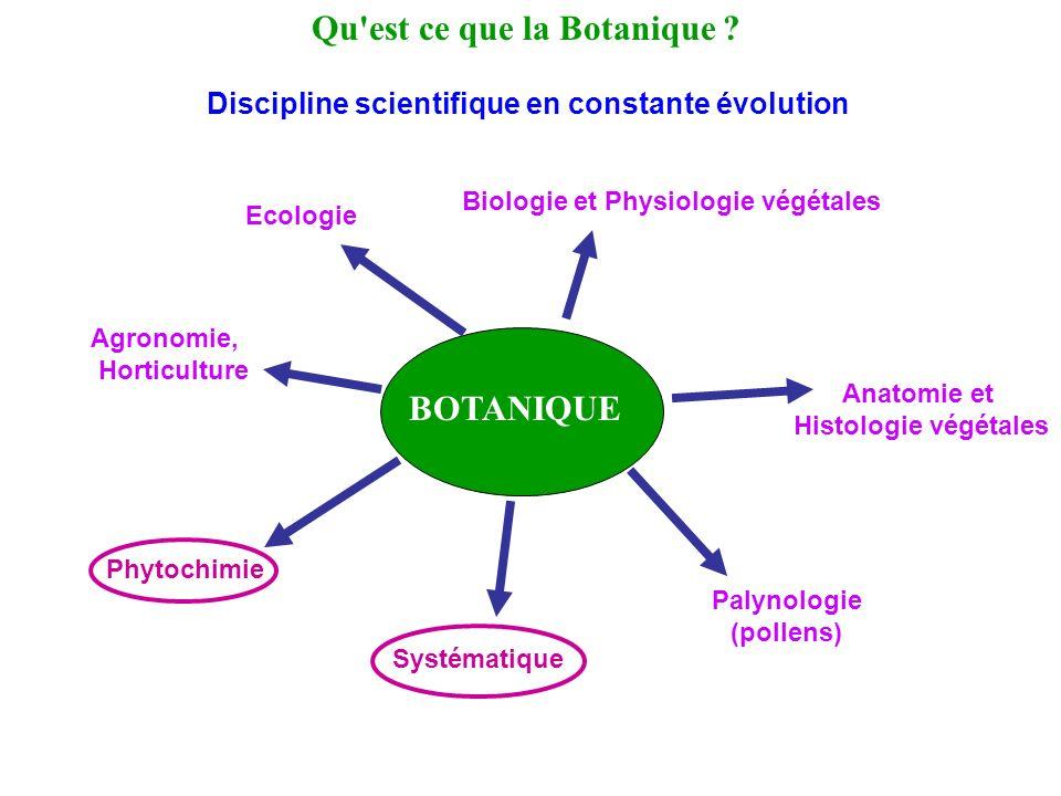 Qu est ce que la Botanique