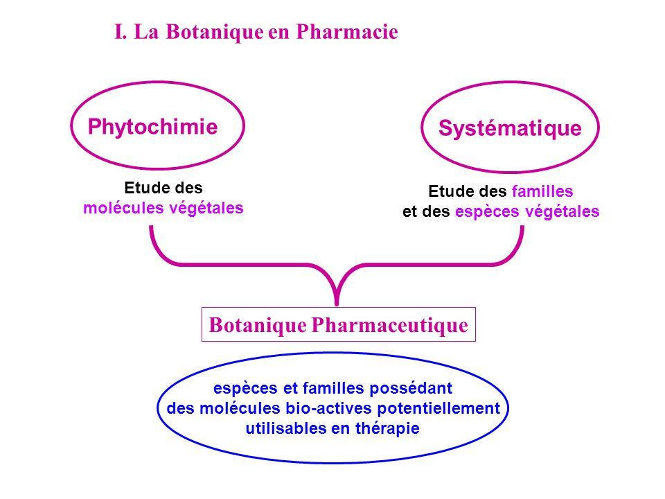 I. La Botanique en Pharmacie