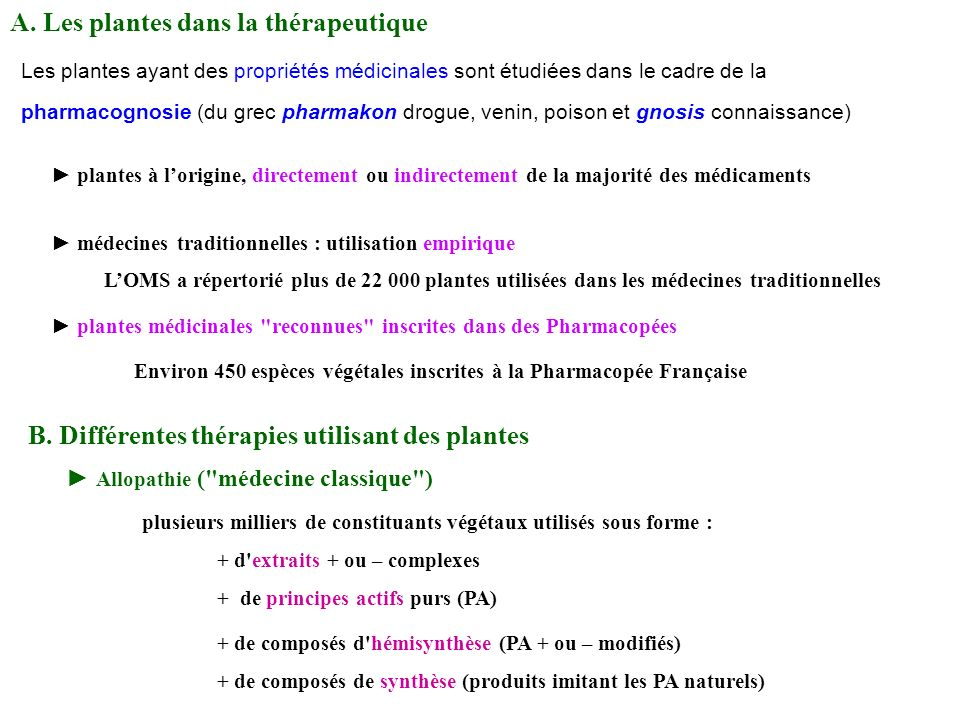 A. Les plantes dans la thérapeutique