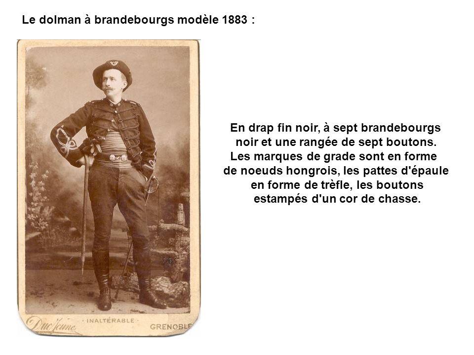 Le dolman à brandebourgs modèle 1883 :