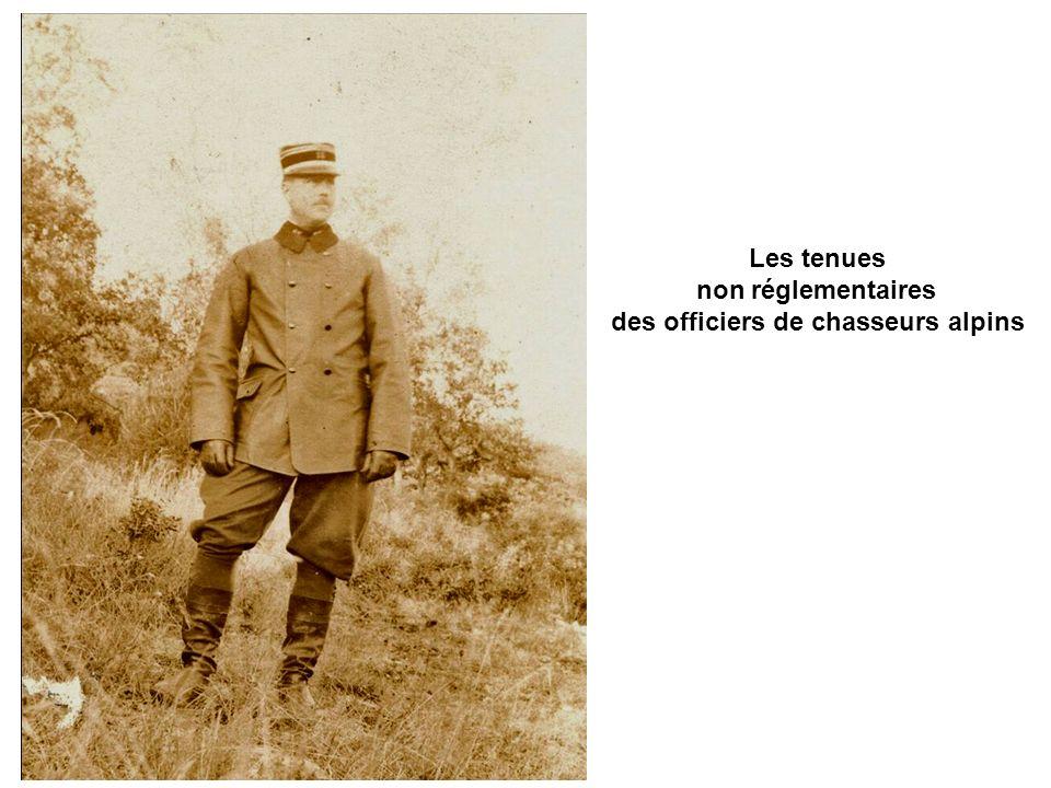 des officiers de chasseurs alpins